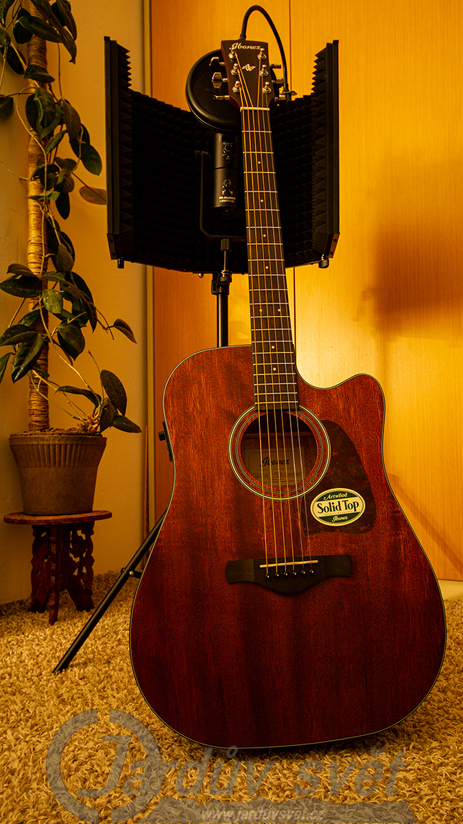 Kytara Ibanez AW54CE-OPN